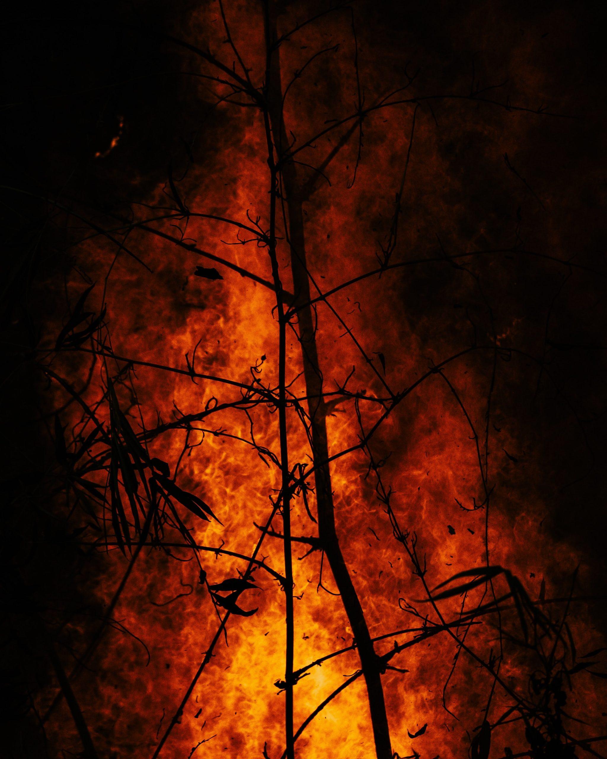 L'incendi i el faqir