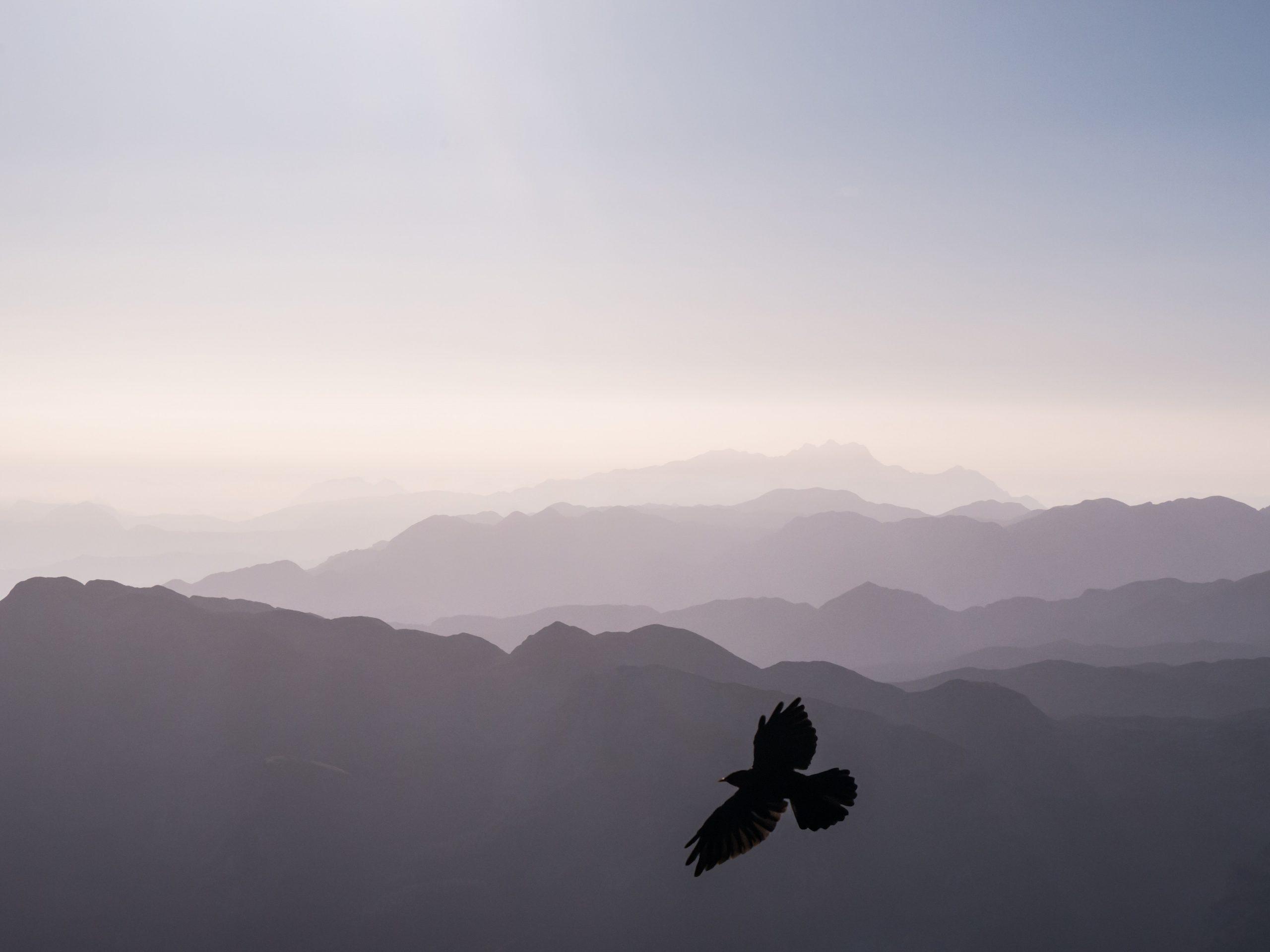 El mètode sufí eficàcia espiritual facilitat transformació. Eficiència