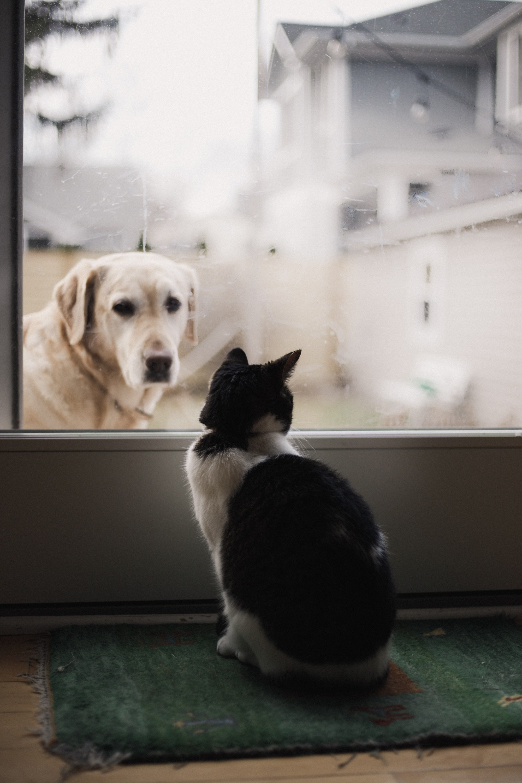 Respectar a l'altre (i estimar-lo) és una decisió personal. Foto